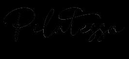 Pilatessa stuudio Logo